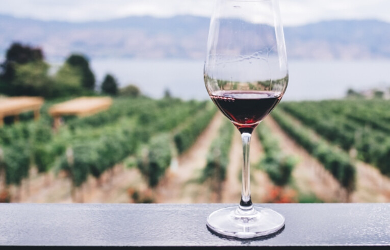 wine glass and a vineyard