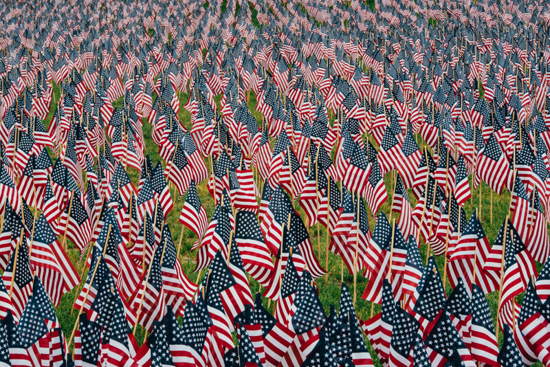 American flags stuck in the ground