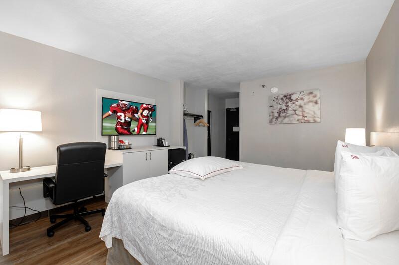 hotel room, king room