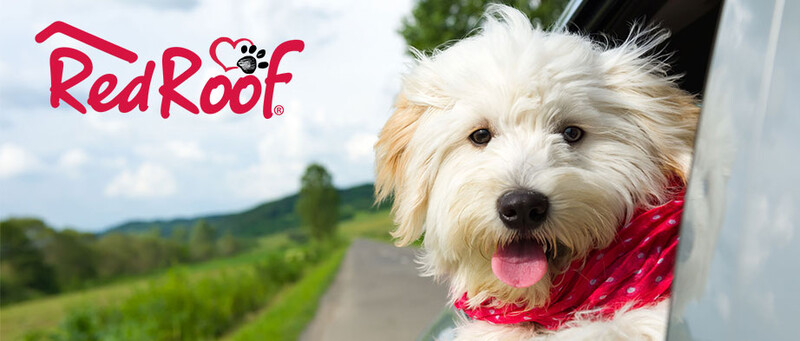 Red Roof Pets Logo Image