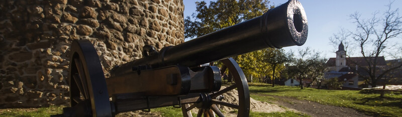 cannon at historical site